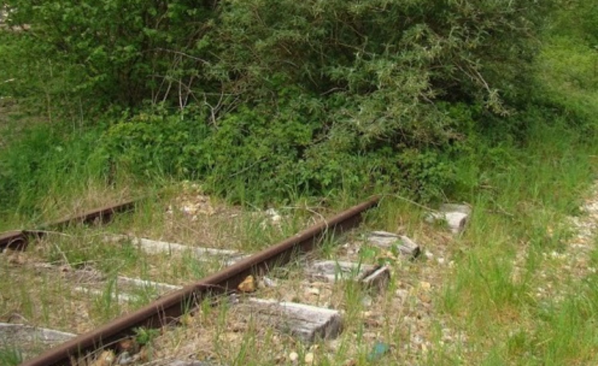 Non à la ligne LGV Poitiers-Limoges